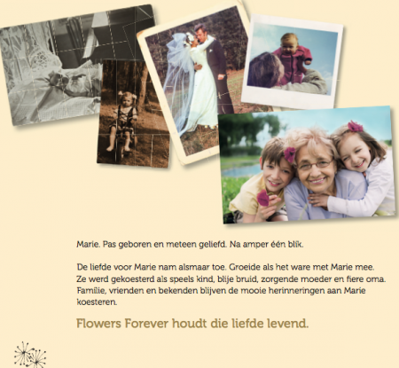 Promotie Flowers Forever