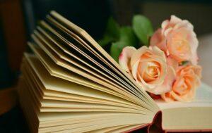 Gelezen boeken 2020 deel 1, al 20 stuks begot!