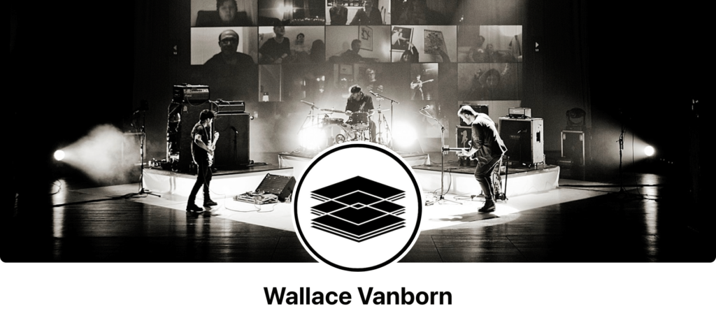 Beste concert Wallace Vanborn